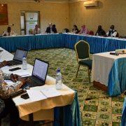 Comité de pilotage du partenariat UE-CNDH